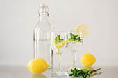 Sparkling mineral water with fresh mint leaves and lemon fruit. Detox drink. Refreshing homemade cocktail