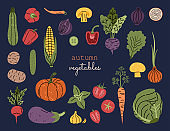 Vegetables set, autumn harvest