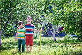 Children playing with garden sprinkler. Preschooler kids run and jump. Summer outdoor water fun in the backyard.