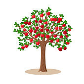 Apple tree with red apple fruits on branches - vector illustration isolated on white background.