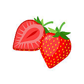 Ripe delicious strawberry fruits, whole and cut section isolated on white background. Vector detailed illustration.