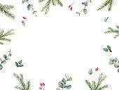 Watercolor vector Christmas card with fir branches and eucalyptus leaves. Hand painted illustration for greeting floral postcard and invitations isolated on white background.