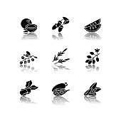 Hair oil ingredients drop shadow black glyph icons set. Jojoba essence for nourishment. Herbal cosmetic product for natural haircare treatment. Isolated vector illustrations on white space.