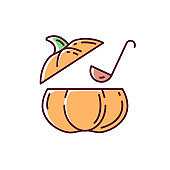 Pumpkin soup RGB color icon