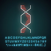 Hexagonal DNA helix neon light icon. Deoxyribonucleic, nucleic acid structure. Molecular biology. Genetic code. Genetics. Glowing sign with alphabet, numbers and symbols. Vector isolated illustration