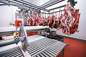 A lot of raw meat hung and arranged in a row in a processing meat production factory. Horizontal view.