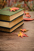 November 12. 2019. Republic of Korea. Autumn and books
