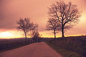 Highway in the early autumn morning. Silhouette of trees against a dramatic sky