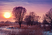 Winter landscape. Evening in the countryside. Sunset with beautiful gradient sky in the field covered with snow. Rural landscape with magical light.