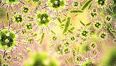 Bacterium closeup