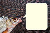 Head of raw fish with open mouth and speech bubble on a wooden background. Copy space