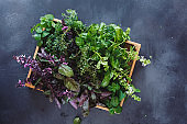 Fresh herbs ingredients for healthy cooking or salad making in a wooden crate.  Rustic dark background