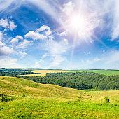 Sunny pasture landscape