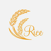 Thai rice isolated vector illustration