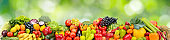 Panorama multicolored fresh fruits and vegetables