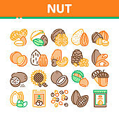 Nut Food Different Collection Icons Set Vector