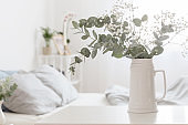 eucalyptus and gypsophila  in jug  in white bedroom