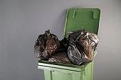 large green rubbish bin with wheels