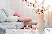 spring pink flowers in vase in white interior