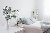 eucalyptus and gypsophila  in vase in white bedroom