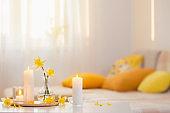 spring flowers in vase on modern interior