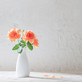 roses in vase on background white wall