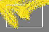 Frame with palm leaves. Floral tropical background. Yellow and gray colors abstract cover design.