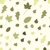 Colourful Autumn Leaves Pattern on White Background