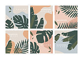 Vector set design colorful jungle templates backgrounds - social media story wallpapers. Can be used like banners, posters, cover design templates.