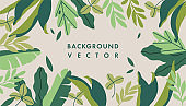 Vector illustration horizontal background with plants and leaves decoration. Can be used like banners, posters, cover design templates.