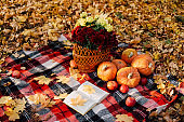 Autumn composition with pumpkins, maple leaves and red apples and flowers.
