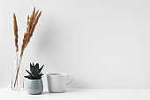 A mug, a potted houseplant and a transparent vase. Eco-friendly materials in the decor of the room, minimalism. Copy space, mock up