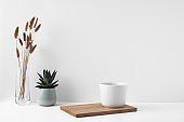 Mug on a wooden stand, house plant, vase. Eco-friendly materials in the decor of the room, minimalism. Copy space, mock up.