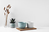 Mugs on a wooden stand, house plant, vase. Eco-friendly materials in the decor of the room, minimalism. Copy space, mock up.