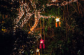 Christmas lights in the tropical gardens in the Frederik Meijer Gardens