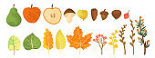 Set of colorful autumn leaves, berries, apple, pears and nuts. Isolated on white background. Simple cartoon flat style with texture. vector illustration. Fall symbol.  Fall elements collection.