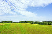 rural aerial landscape on sunny summer day. green field with forest under blue sky.