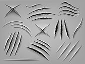 Realistic claw scratch. Paper cut and scratch animal claw, rough holes in flat surface, fabric or paper. Animal paw marks vector illustrations