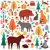 Cartoon autumn animals. Cute woodland birds and animals, moose duck wolf and squirrel, wild woods fauna isolated vector illustration icons set