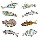 A Collection of Underwater Sea and Freshwater Fish Sharks and Eels Cartoon Illustration Clipart in Vector Form Logos