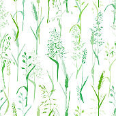 Meadow grass seamless pattern in green colors