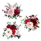 Classic luxurious red roses, pink carnation, ranunculus, dahlia, white peony