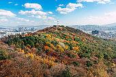 Namsan  Seoul  with autumn maple trees in Korea