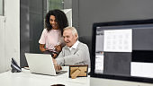 Aged man, senior intern looking at laptop while showing results to his young colleague, Friendly female worker training, mentoring new employee, preparing for work