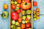 Set of ripe tomatoes in the wooden tray