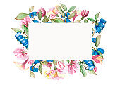 Watercolor hand painted nature floral rectangle border frame with honeysuckle pink blossom flowers, green leaves and blue berries bouquet on the white background for invitation and greeting card
