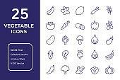 Vegetables Line Icon Design