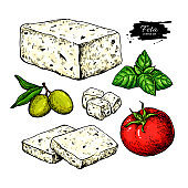 Greek feta cheese block, slice drawing. Vector hand drawn food sketch with olive, basil, tomato.