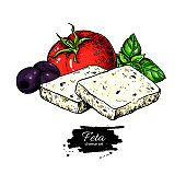 Greek feta cheese block slice drawing. Vector hand drawn food sketch with olive, basil, tomato.
