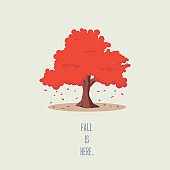 Tree in fall or autumn vector landscape. Seasonal symbol with leaves falling, beautiful cartoon artwork.